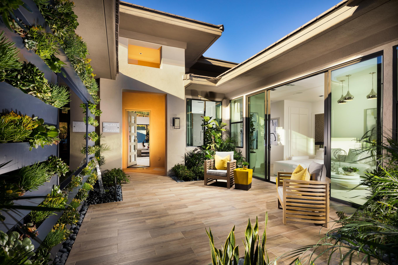 Small Backyard with a Vertical Garden