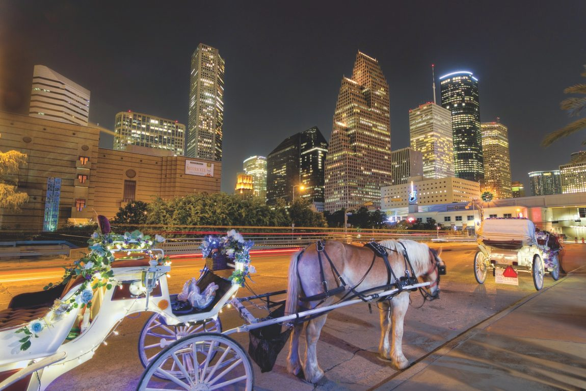 Carriage Ride with city backdrop
