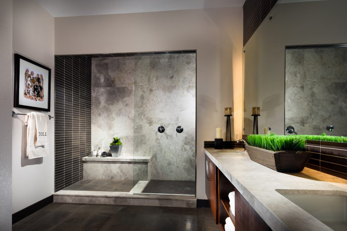 Spa-like bathroom with shower room and modern design.
