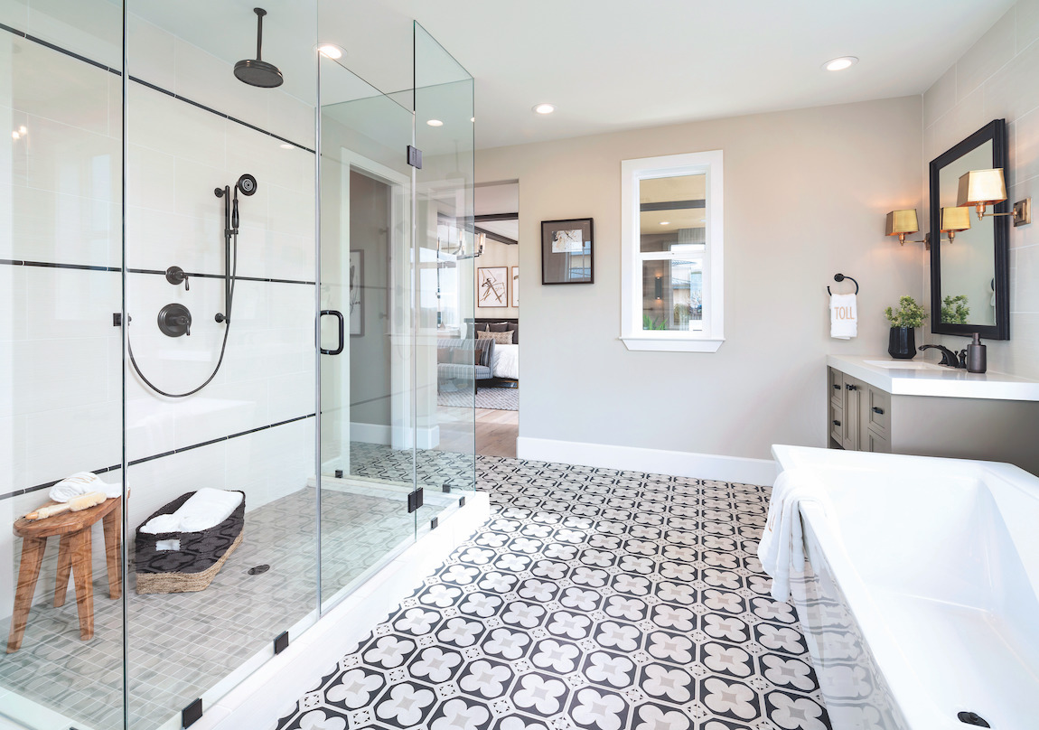 Walk-in shower with Forte showerhead fixture
