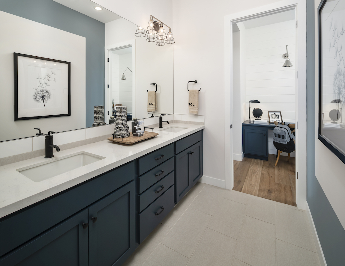 Luxe bathroom featuring Sherwin-Williams 2020 Color of the Year and other elegant hues