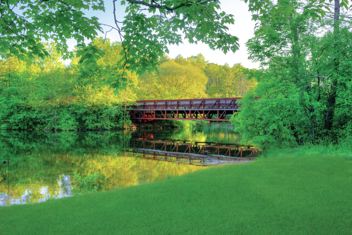 Peaceful trail in Ann Arbor, MI