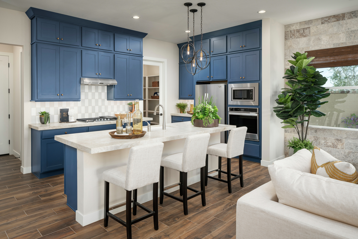 Stunning gourmet kitchen with blue cabinetry