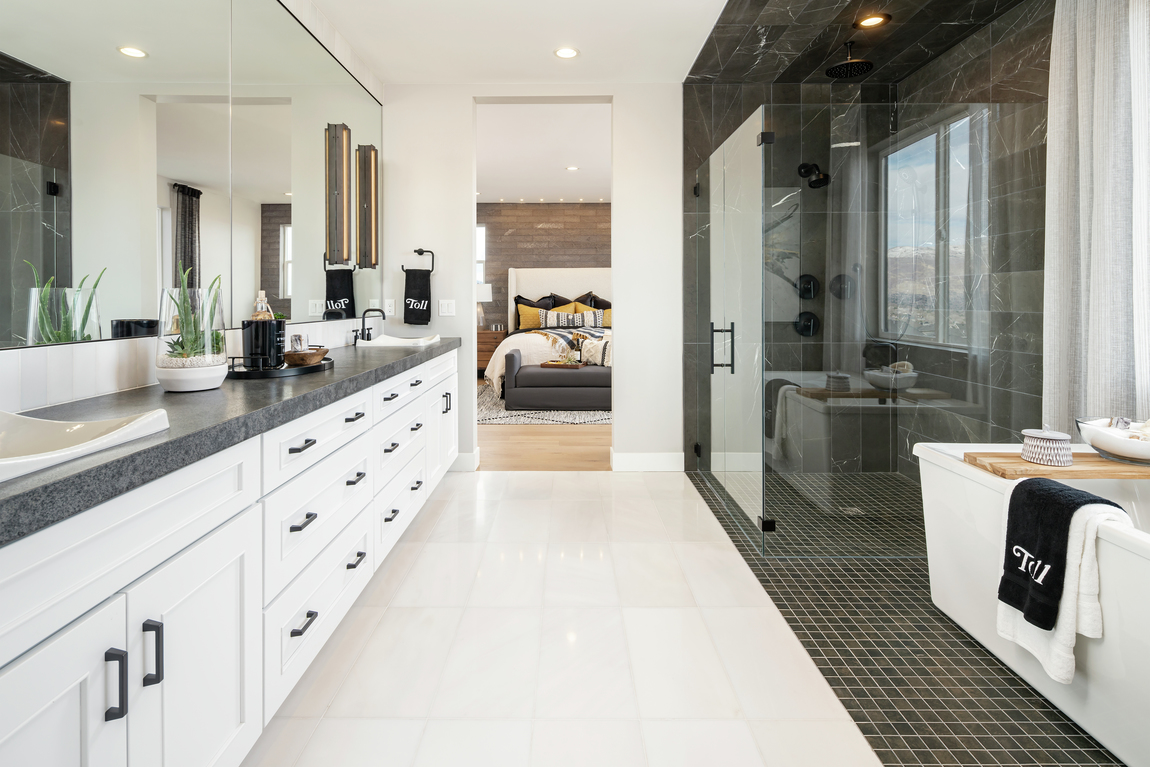 Bathroom in a primary suit with a contrasting black walk-in shower.